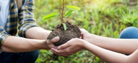 Gardening and Giving: Encouraging Philanthropy in Children