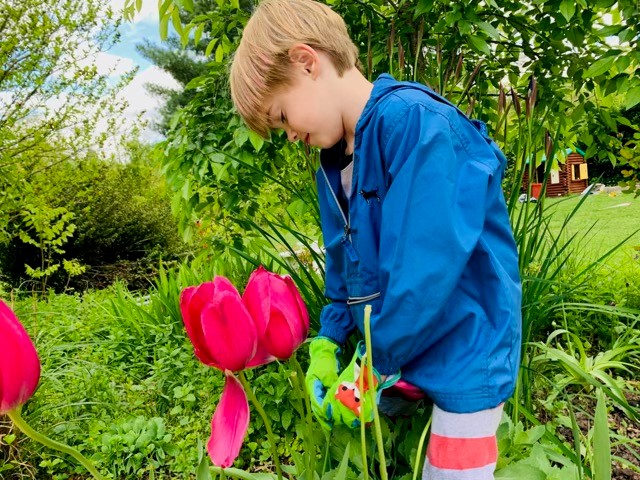 Finding Contentment Inside My Garden and Beyond